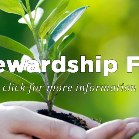 Stewardship Fair Powerpoints